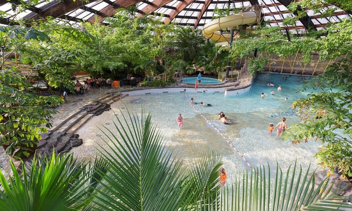 Stor pool med mennesker omgivet af grønt