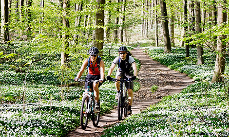 cykel, cykling, bornholm, cykelferie