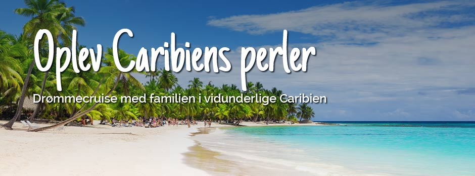 Strand med palmer og azurblåt vand