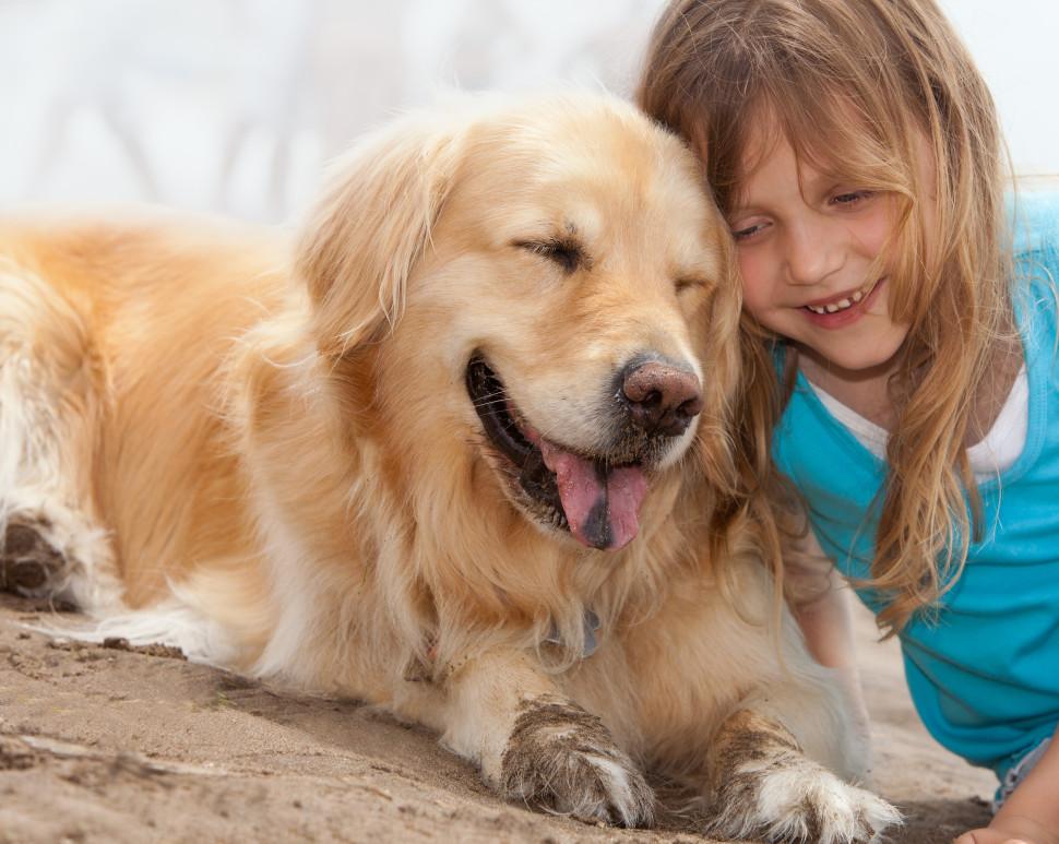 Haustiere - Allcamps Häufig gestellte Fragen