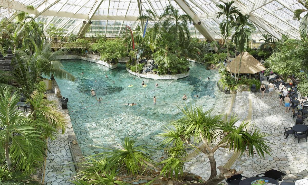 Indenddørs pool og palmer med badegæster