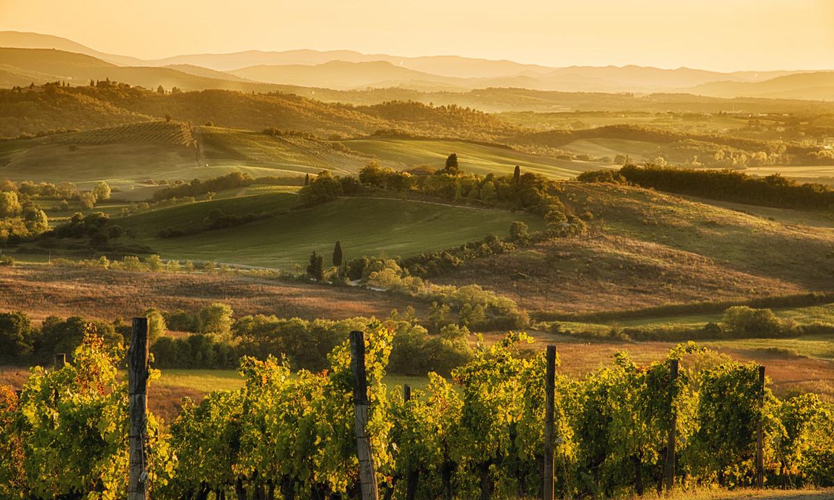 Solnedgang - Landskabet i Toscana