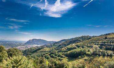 Dlaczego warto wybrać region Ardèche?
