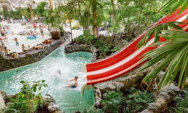 Badeland med tropiske omgivelser