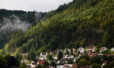 Schwarzwald Niemcy camping