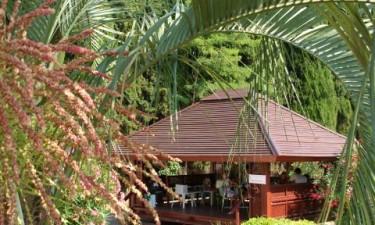 Restaurant og brasserie