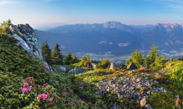 Camping Kärnten