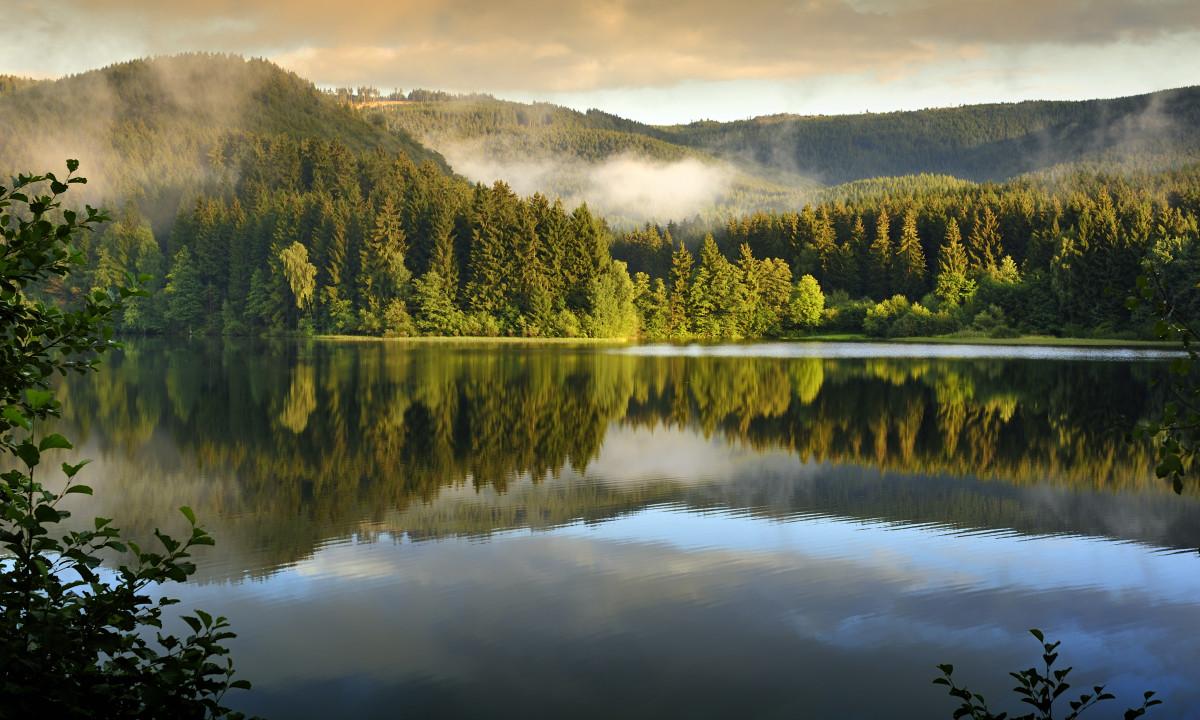 Smuk natur i Harzen, Tyskland