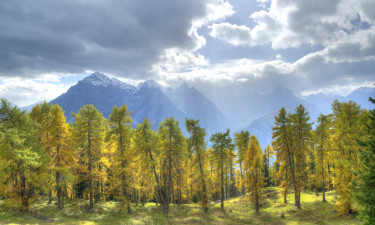 Naturen i Schweiz