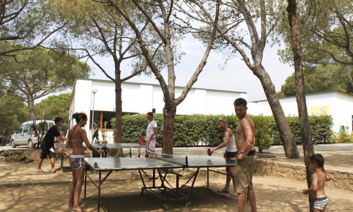 Bordtennis på campingpladsen