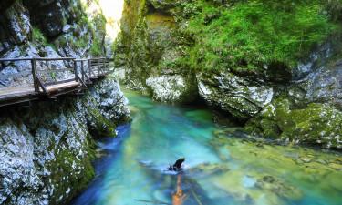 Triglav nationalpark - Krystalklart vand