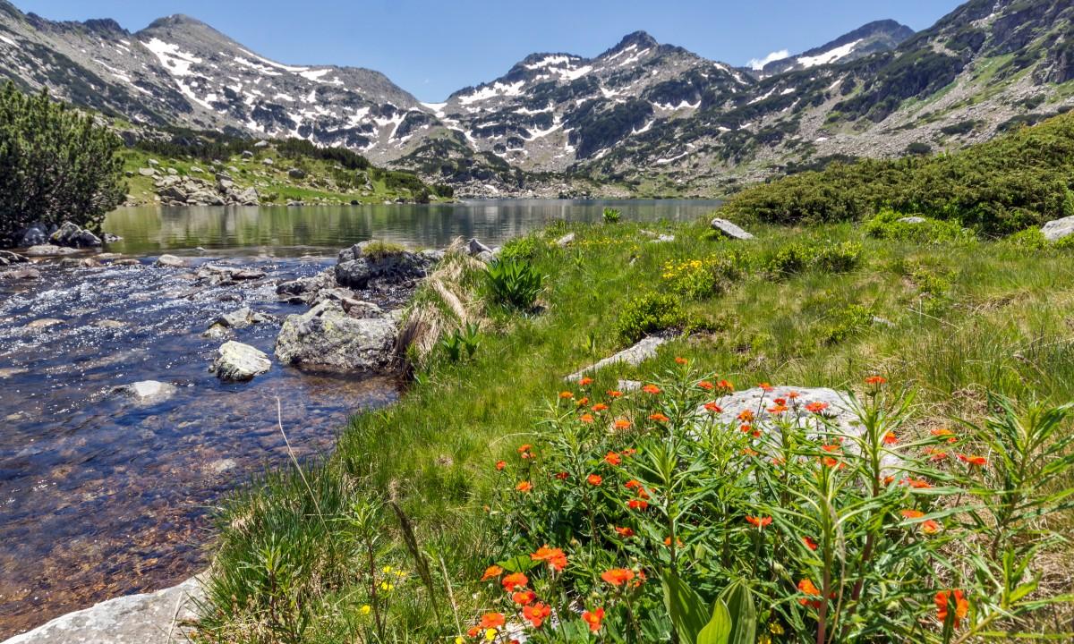 Pirin National Park i Bulgarien