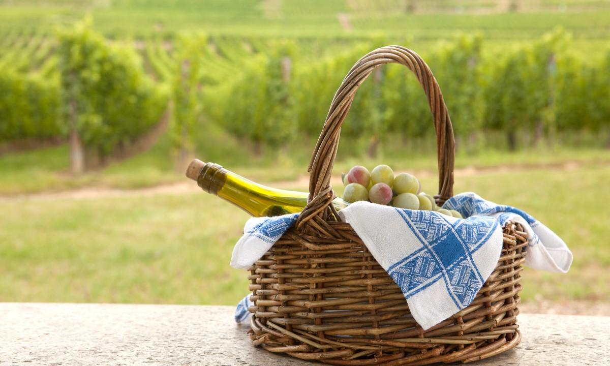 Kurv med vin og druer