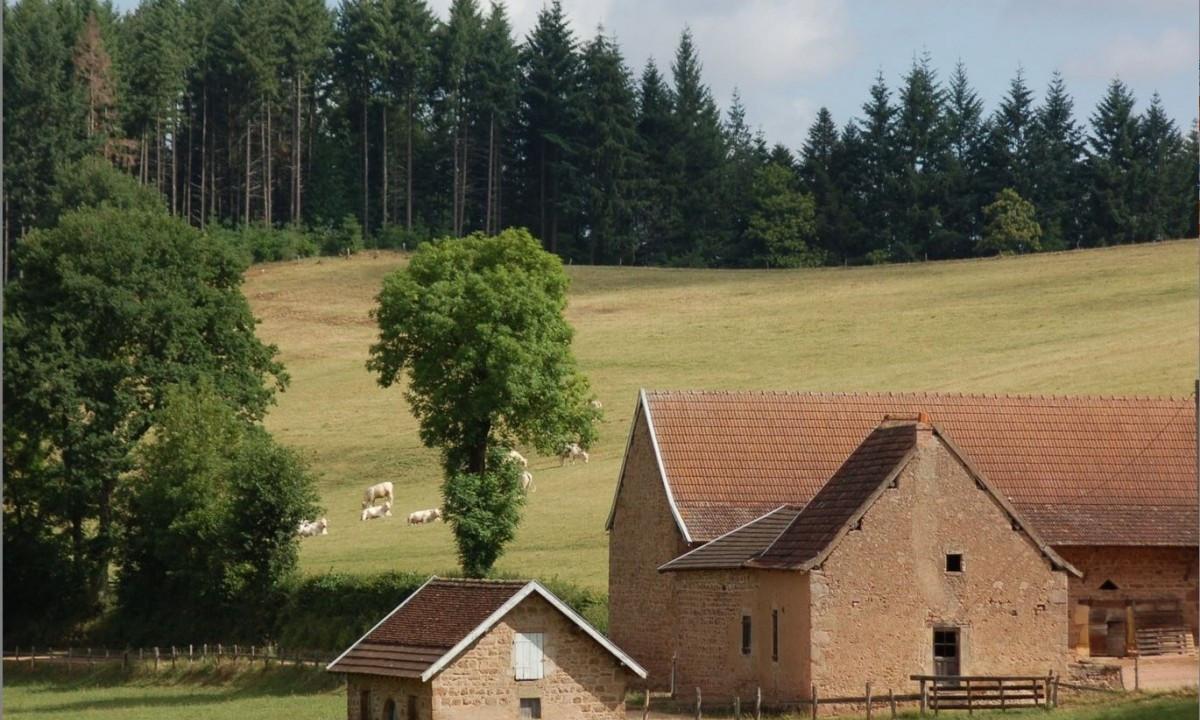 Marker og natur nær feriestedet