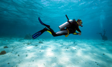 Dykning - Dykker på havets bund