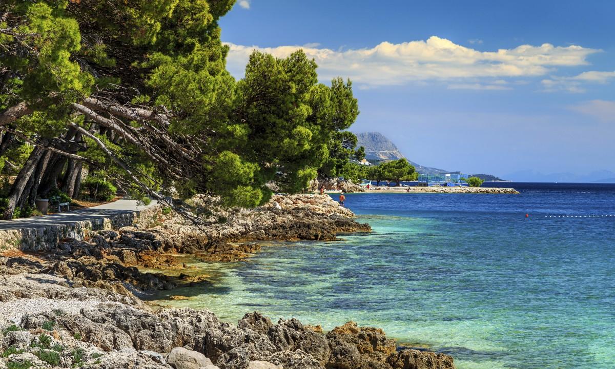 Smuk stenstrand i Kroatien