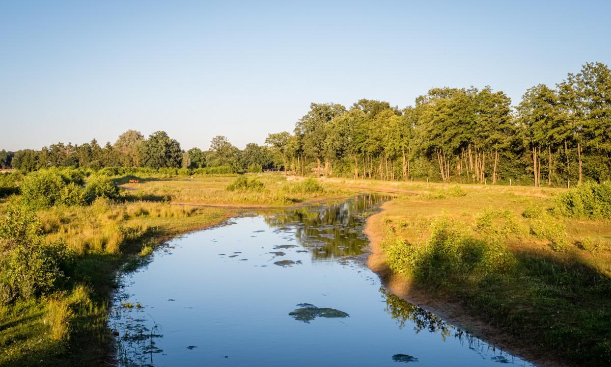 Flot hollandsk natur