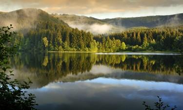 Naturlandskab i Harzen