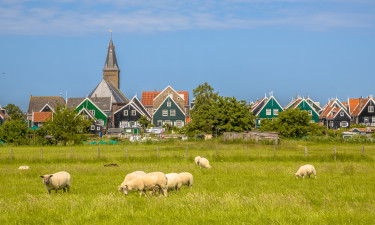 Naturen i Brabant i Holland