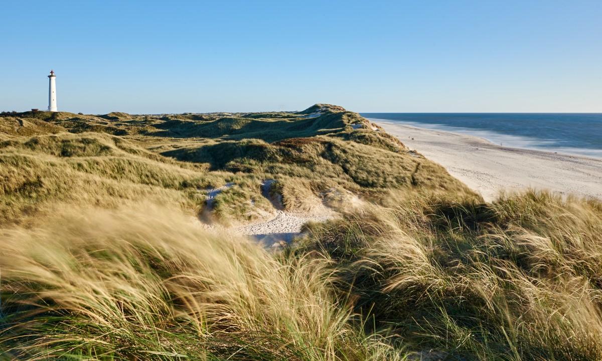 Flot naturlandskab ved havet i Midtjylland