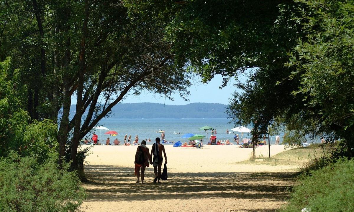 Sti til stranden