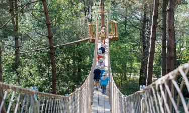 Les Bois aux Daims - På udflugt i naturreservatet