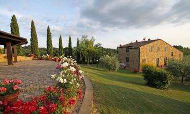 Ferielejlighederne på Borgo Collelungo