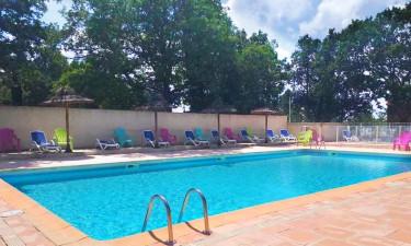Pool Camping La Buissière (Barjac)