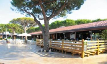 2 italienske spisesteder og 1 hyggelig bar