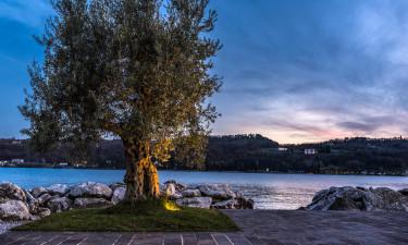 Campingplätze Gardasee
