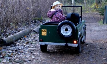 Viola i bil