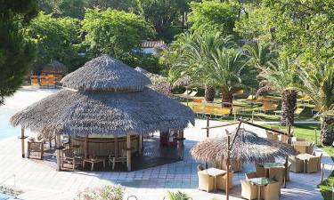 Bar og restaurant på pladsen