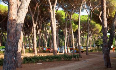 Kombiner campingferien med Rom