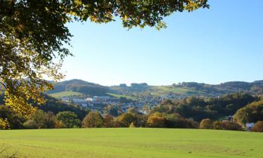Grøn natur i Hessen