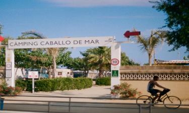 Om Camping Caballo de Mar
