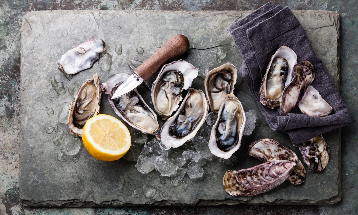 Oesters fra Charente-Maritime