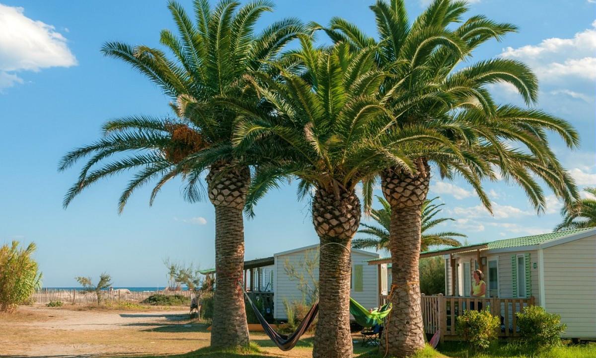 Mobilhomes ved strandkanten