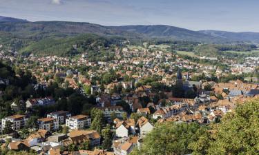 Seeblick - Det grønne Harzen