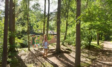 Oplev naturen direkte fra ferieboligen