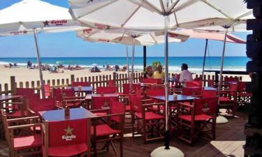Restaurant Camping Park Playa Bara