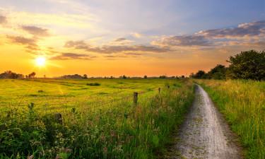 Niedersachsen - Solnedgang over marken
