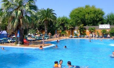 Pool og svømmeture