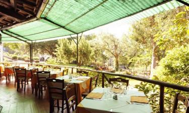 Restaurant, bar og faciliteter