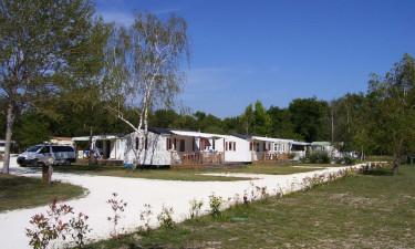 Ved Kystlinjen i Gironde