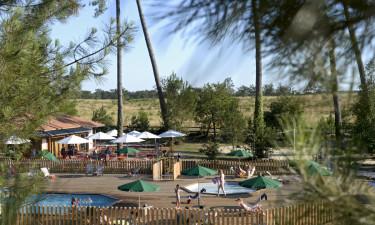 Dlaczego wyjazd na kemping Landes Sud to świetny sposób na urlop?