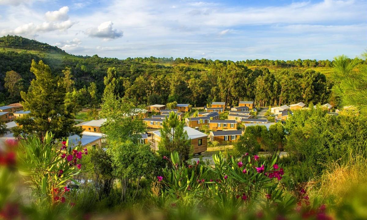 Campingplads i grønne omgivelser