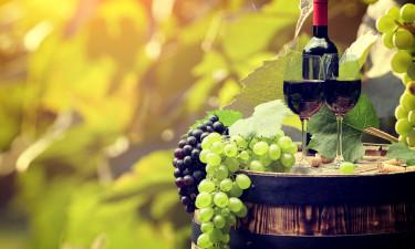 Vin -  Druer og et glas vin