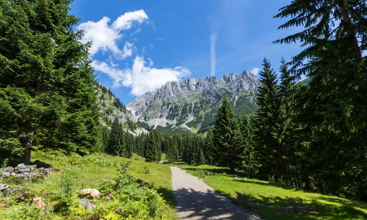 Natur i Tirol, Oestrig