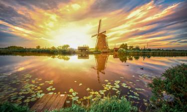 Wakacje Holandia Południowa