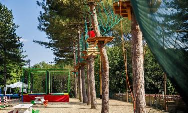 Sportsaktiviteter & børneaktiviteter